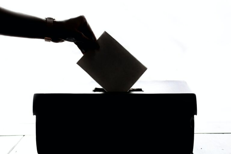El voto nulo y la desconfianza en los resultados electorales